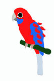 Little red parrot. A little red parrot on a branch Stock Illustration
