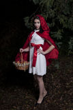 Little Red Riding Hood. Girl dressed as Little Red Riding Hood Royalty Free Stock Photo