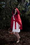 Little Red Riding Hood. Girl dressed as Little Red Riding Hood Royalty Free Stock Photography