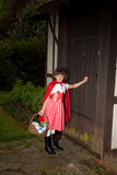 Little red riding hood arriving Stock Images