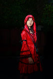 Little red riding hood Stock Photography