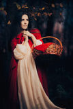 Little Red Riding Hood in the Forest Stock Photos