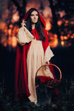 Little Red Riding Hood in the Forest Royalty Free Stock Photos