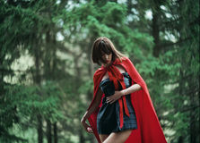 Little Red Riding Hood in the wild forest Stock Photos