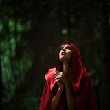 Little Red Riding Hood in the wild forest Royalty Free Stock Photography