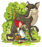Little Red Riding Hood and Wolf in the forest Stock Photography