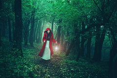 Little Red Riding Hood in the woods Stock Photos