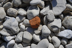 Little Red Rocky stock photography