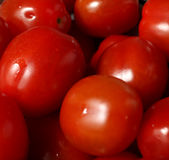 Little red tomatoes Royalty Free Stock Image