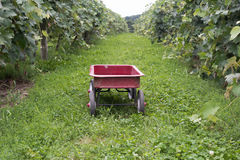 Little red wagon Royalty Free Stock Photo