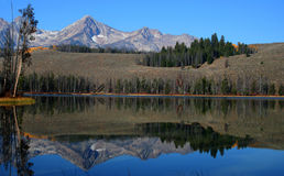 Little Redfish Lake 4. Sawtooth Mountaing reflected in Little Redfish Lake, Stanley Idaho Royalty Free Stock Photos