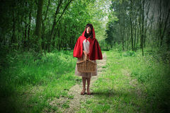 Little Riding Red Hood. Standing in a wood Royalty Free Stock Photography