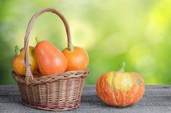 Ripe orange pumpkin Stock Images