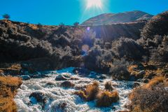 Little river flowing through Ashburton Lakes District, South Island, New Zealand stock image