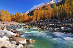 Little river flows through a valley Stock Images