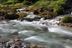 Little river in nature Stock Photo