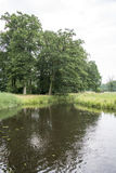 Little river in nature in holland Royalty Free Stock Photos