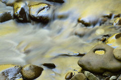 Little River Rapids Golden. Little River rapids captured with motion blur and illuminated by reflected color from sunlit spring foliage, Great Smoky Mountains Stock Photography