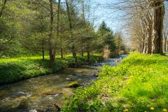 Little river Royalty Free Stock Images