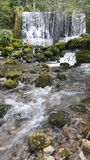 Little river and waterfalls. Little river Vrelo (Godine) on the Tara mountain, national park in western Serbia. Translated in English the name of this river is stock photos