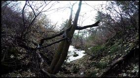 Little Rock kanjonUtah Timelapse vandring lager videofilmer