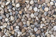 Little Rockbakgrund Arkivfoton