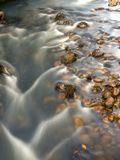 Little rocks and the stream of a river royalty free stock photos