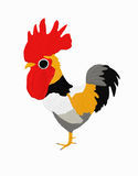 Little rooster. A little rooster on white Royalty Free Stock Images