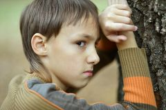 Little sad boy in the autumn. Little sad boy in a warm sweater for a walk in the autumn royalty free stock image