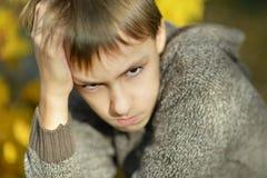 Little sad boy. Portrait of a little sad boy in autumn park Stock Images