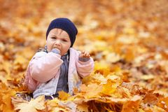Little sad girl in the autumn park Royalty Free Stock Image