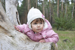 Little  sad girl forest. Little sad girl in autumn forest near snags Stock Photography