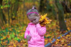 Little sad girl holding fallen leaves in autumn park. Young sorrowful child holds leaf. Small heartbroken female in dark forest. stock photography