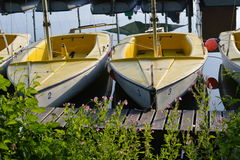 Little sailboats Stock Image