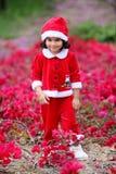 Little santa Royalty Free Stock Photo