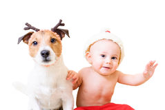 Little Santa Clause and his funny reindeer  on white background Stock Photo
