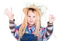 Little scarecrow Royalty Free Stock Image