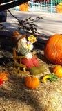 Fall scarecrow Royalty Free Stock Photo