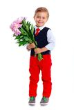 Little schoolboy Royalty Free Stock Images