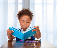Little schoolboy read book Royalty Free Stock Photo
