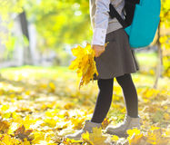Little schooler girl in the autumn park Royalty Free Stock Photo