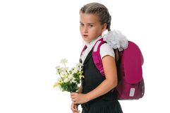 Little schoolgirl Stock Image