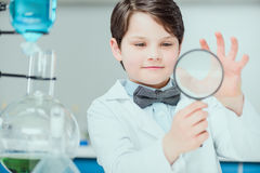 Little scientist in white coat holding magnifier in chemical lab Royalty Free Stock Image