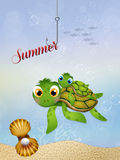 Little sea turtle in summer Royalty Free Stock Image