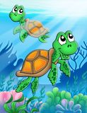 Little sea turtles. Color illustration Stock Images