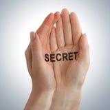 Little secret in hand Royalty Free Stock Image