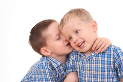 Little secrets. Two boys and their little secrets isolated on white Royalty Free Stock Image