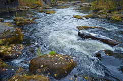 Little seething mountain river with moss stones Stock Photo