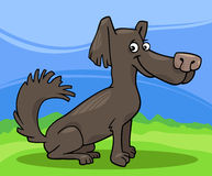 Little shaggy dog cartoon illustration Royalty Free Stock Photography