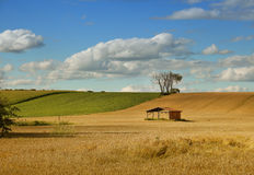 Little shed in a field Stock Photography